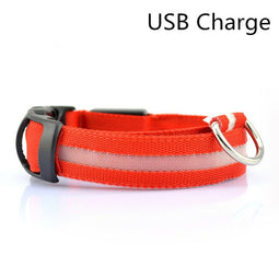 Red USB led light up dog collar for nights