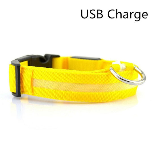 Yellow led light up dog collar for nights