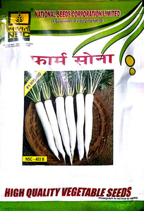 Radish (मूली) 100gm(This Price include Procurement & Handling)