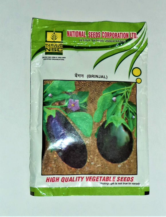 NSC Brinjal(बैंगन) -PK-50gm( This Price include Procurement & Handling )