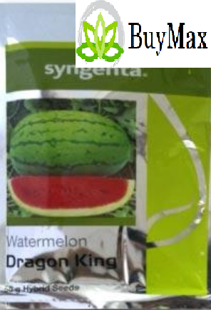 Syngenta DRAGON KING WATER MELON-50GM