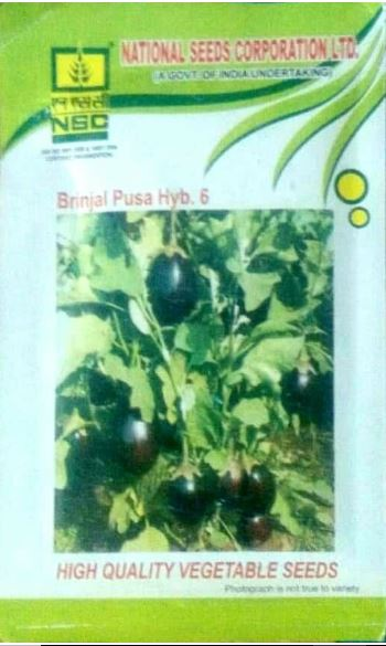 NSC Brinjal(बैंगन )- Pusa hybrid 5-10 gm( Price include Procurement & Handling)