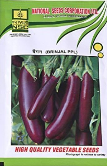 NSC Brinjal(बैंगन) -PPL-50gm( This Price include Procurement & Handling )