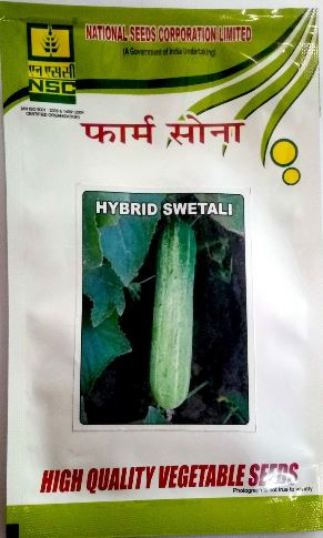 NSC Cucumber(खीरा)-Swetali-10gm( This Price include Procurement & Handling )