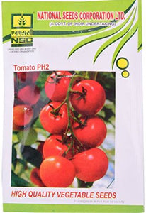 NSC Tomato(टमाटर)- PH2- 10gm( This Price include Procurement & Handling )