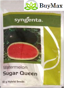 Syngenta SUGAR QUEEN WATER MELON (50 GMS)