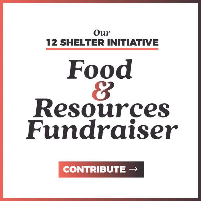 Food & Resources Fundraiser | 12 Shelter Initiative