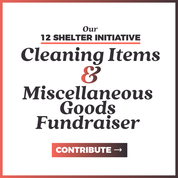Cleaning Items & Miscellaneous Goods Fundraiser | 12 Shelter Initiative