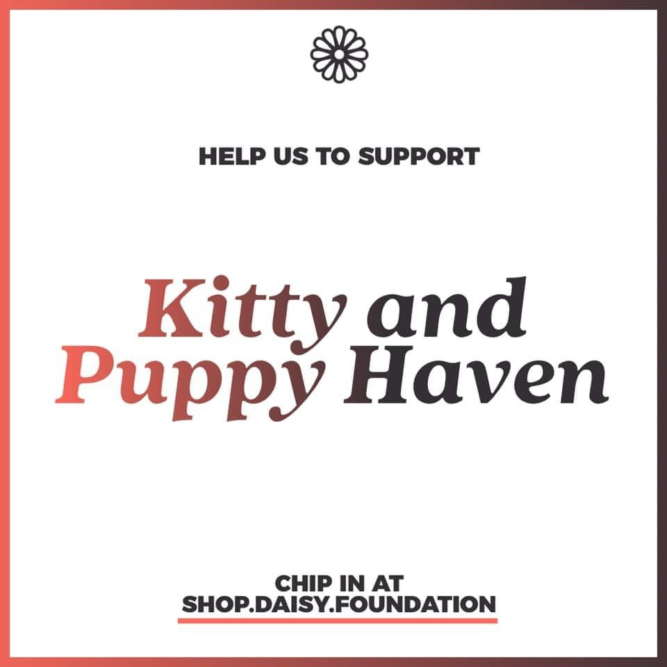 Year-end fundraiser - Resources for Kitty & Puppy Haven