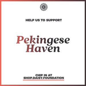 Year-end fundraiser - Resources for Pekingese Haven