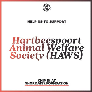 Year-end fundraiser - Resources for Hartbeespoort Animal Welfare Society (HAWS)
