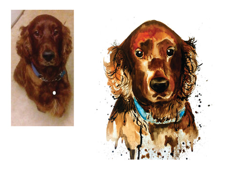 pet dog portrait