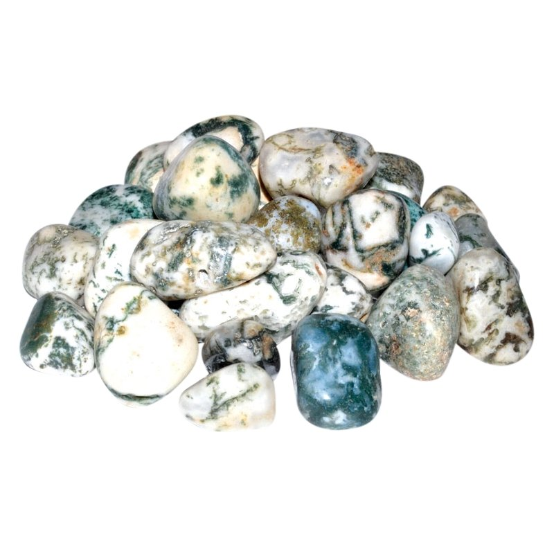 Tree Agate Tumbled Stones - Tarah Co.