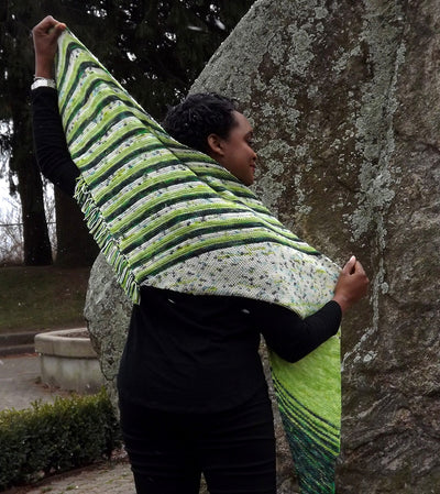 Vector Points Shawl Kit (includes pattern)