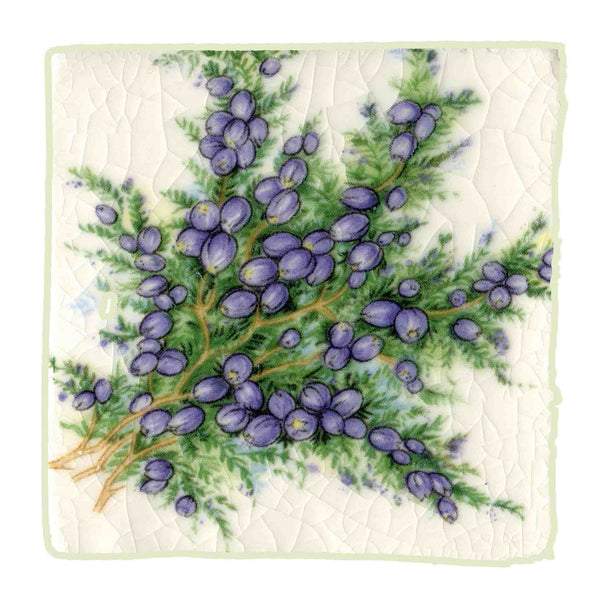 Heather & Thistle Tiles 1