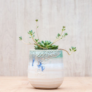 Large Barnacle Planter in Mint Confetti