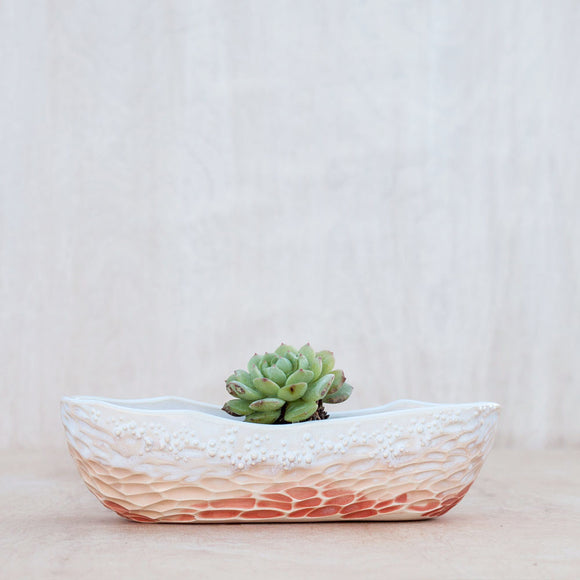 Neptune Boat Planter- Assorted Colors