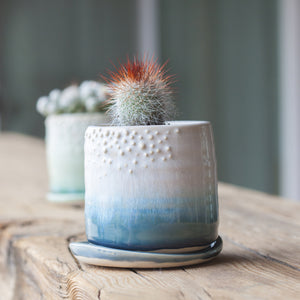 Saucer Only - Babe Planter