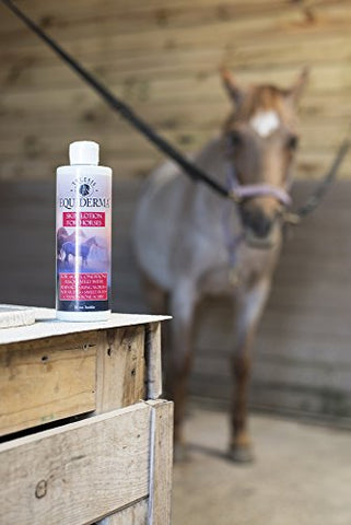 Equiderma Horse Skin Lotion for Rain Rot