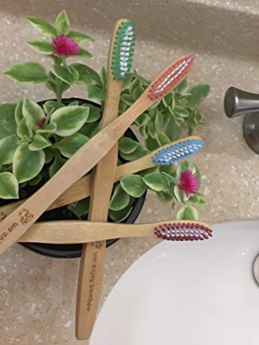 Natural Organic Eco Friendly Bamboo Toothbrush Adult Soft Nylon Bristles, Bpa Free, 100% Plastic Fre