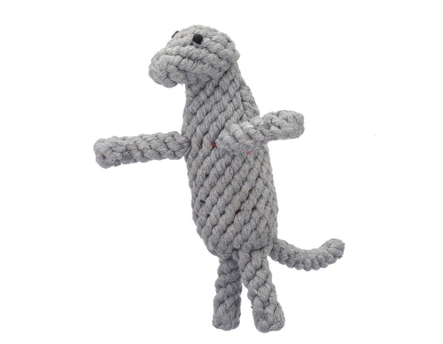 Dexter The Komodo Dragon Rope Dog Toy
