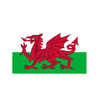 Welsh Dragon Flag. 8ft x 5ft - Life's a breeze GB Ltd