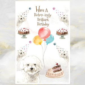 Bichon Frise greetings card