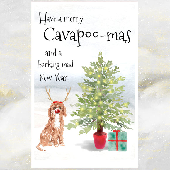 cavapoo dog christmas card