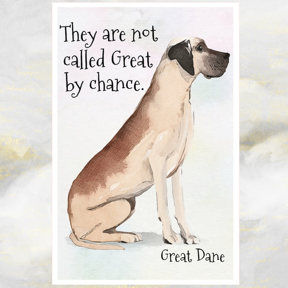 Great Dane Dog Greetings Card, Great Dane Dog Card, Great Dane Dog.