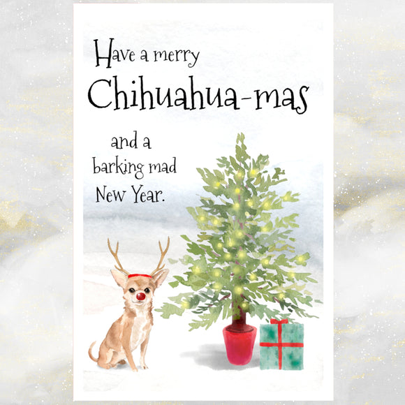 chihuahua dog christmas cards