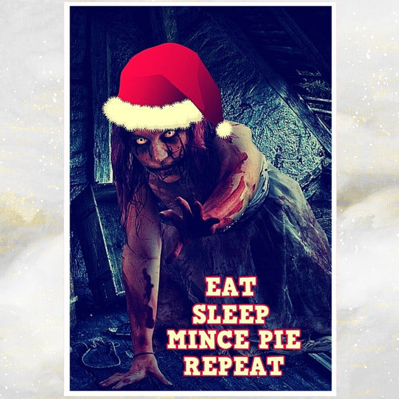eat sleep mincepie repeat