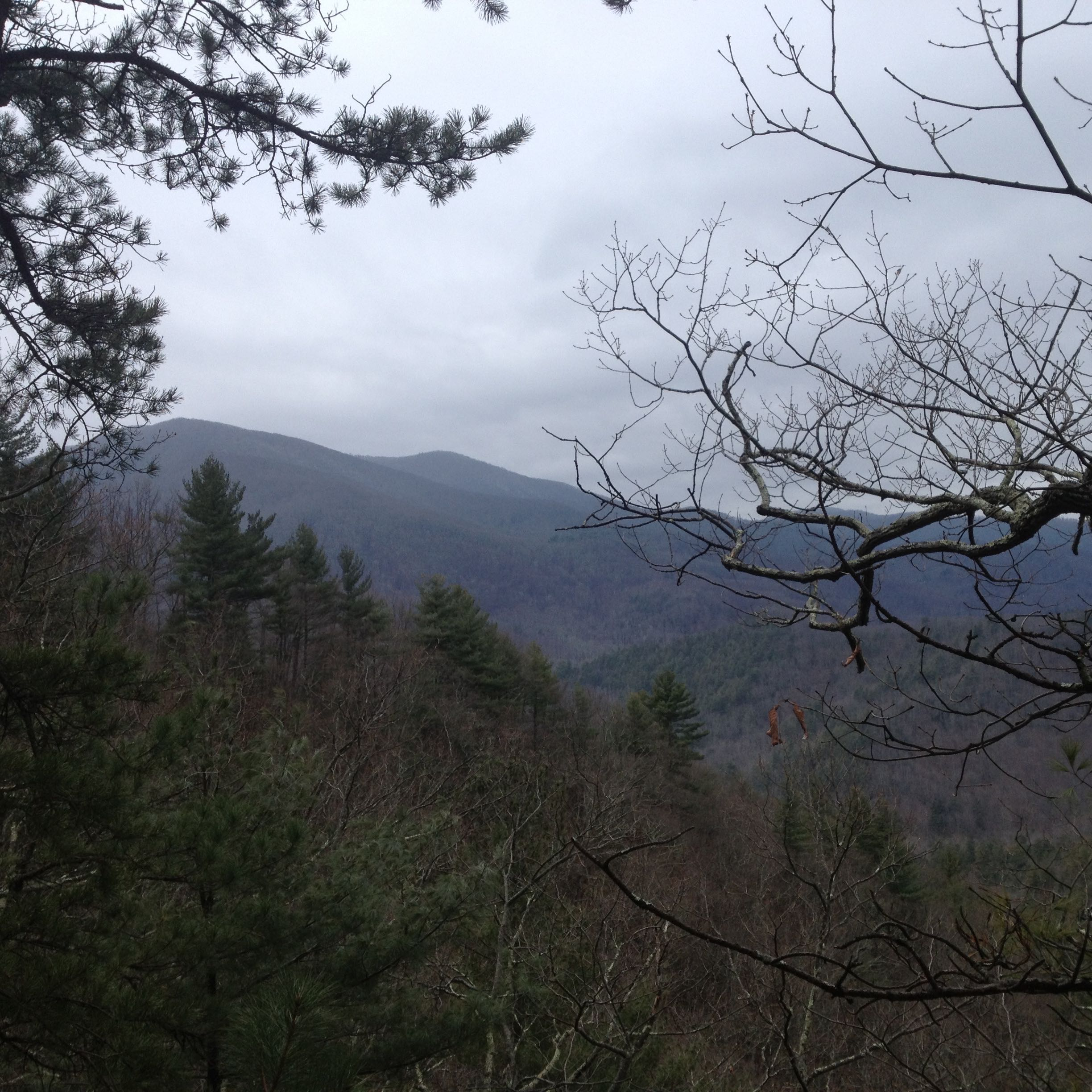 Mountain view from the Appalachian Trail in February.