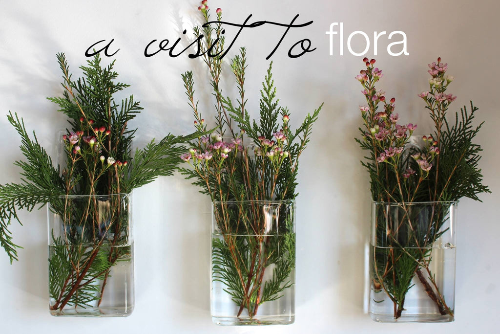 Flora is a fun small florist and greenery shop in West Asheville