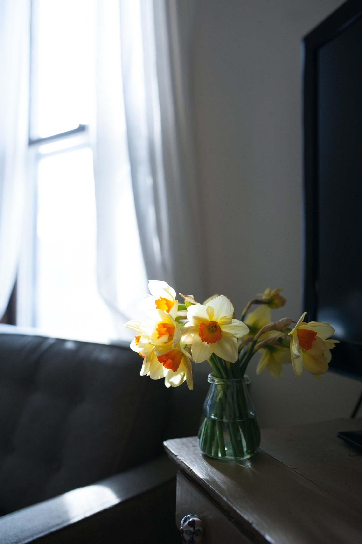 Fresh picked spring blooms in a hand blown glass vase and natural light pouring in the window.