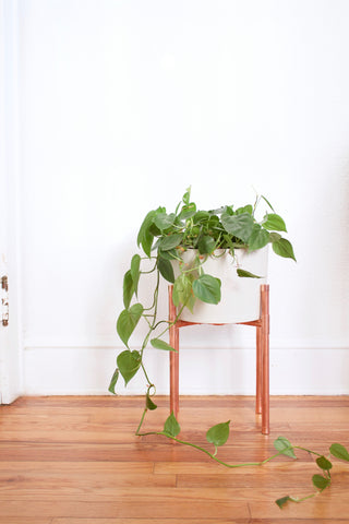 Copper Stand & Concrete Planter