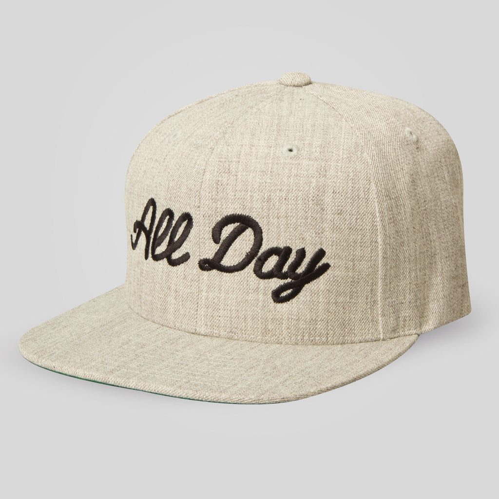 Upper Playground - All Day Snapback in Heather