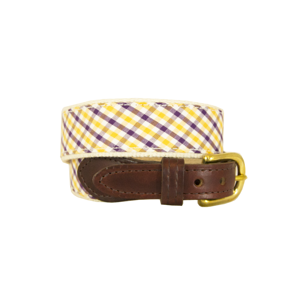 Children's Purple & Gold Belt