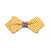 Boy's Orange & Maroon Bow Tie