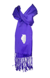 Illinois Scarf - Purple & White