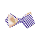 Purple & Orange Bow Tie