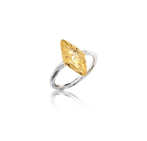 Diamond Ring- large