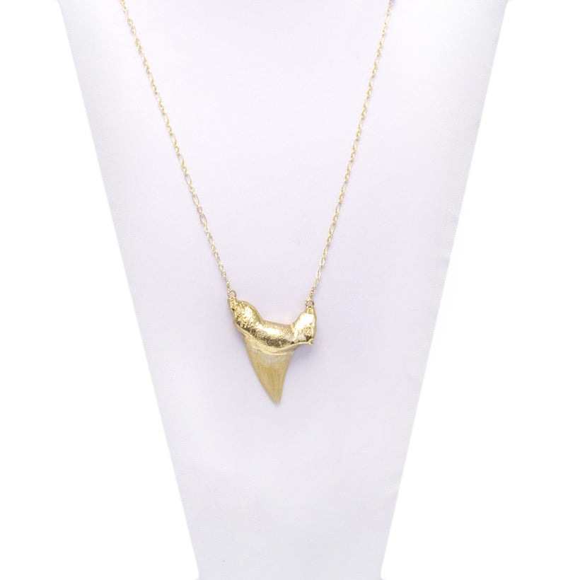 Large Gold Shark Tooth Necklace