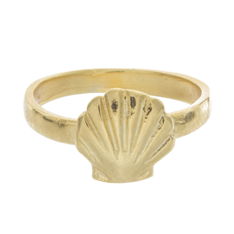 Shell Knuckle Ring