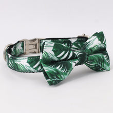Load image into Gallery viewer, Tropic Vibez Leash & Collar Set