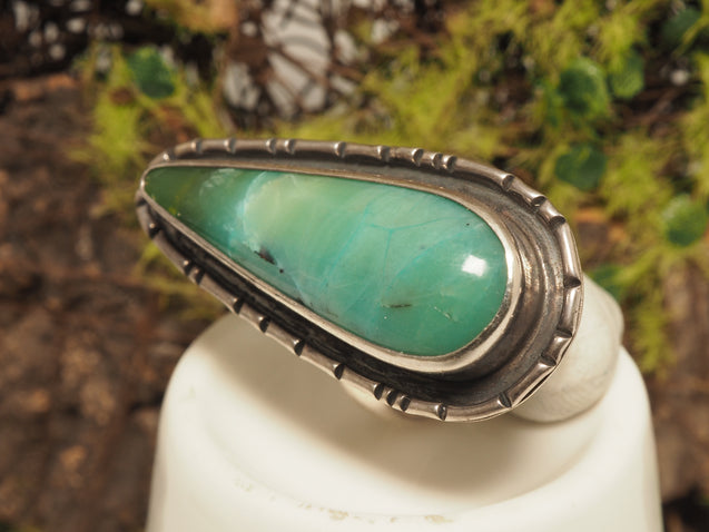 Petrified Opalized Wood Ring - kaiasparksdesigns