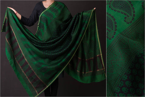 Chanderi Silk Original Bagh Print Natural Dyed Dupatta