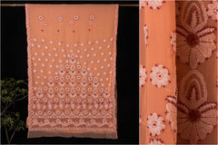 Lucknow Chikankari Hand Embroidered Georgette Saree with Blouse