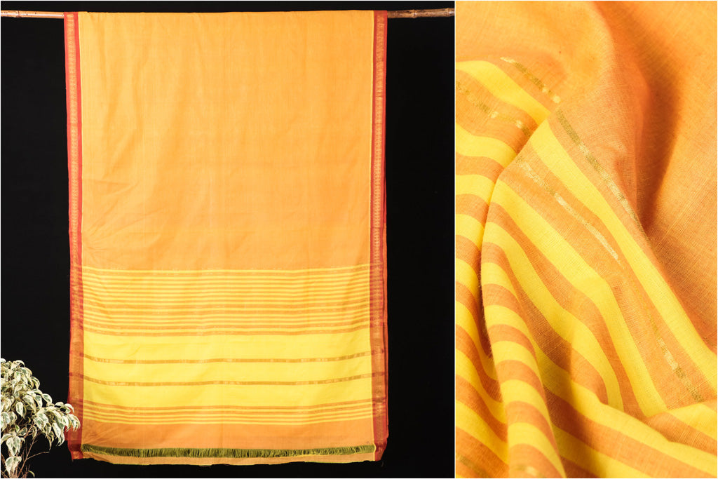 Godavari Zari Leaf Border Cotton Saree with Blouse by DAMA