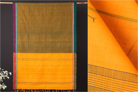 Traditional Handloom Kanchipuram Pure Cotton Border Saree from Tamil Nadu