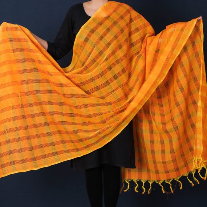 Handloom Mangalgiri Cotton Missing Checks Dupatta with Tassels by DAMA
